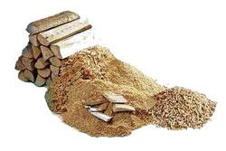 Biomasa Vigo